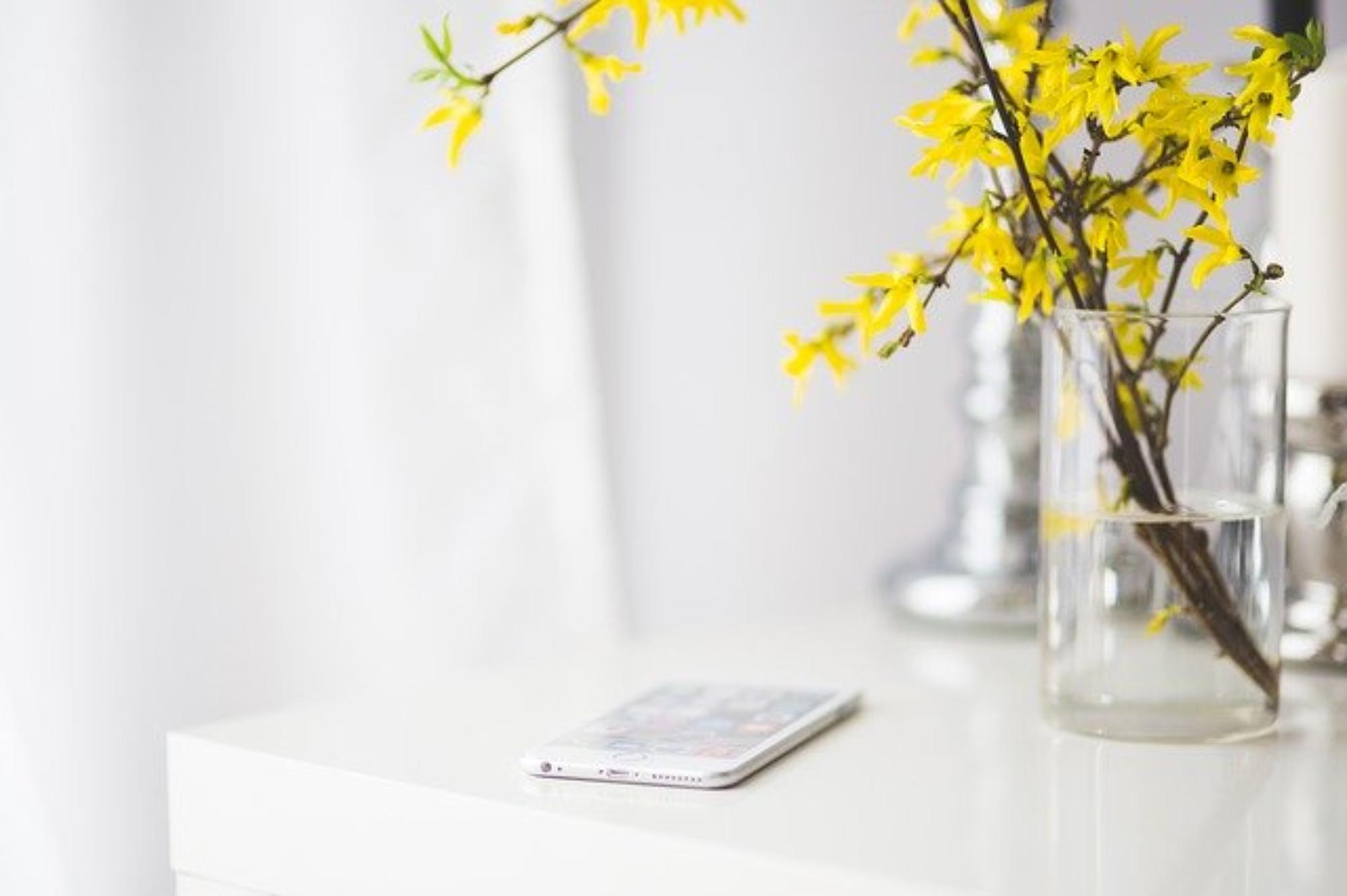 Kompozycje kwiatowe w naczyniu – twój ogród w domu